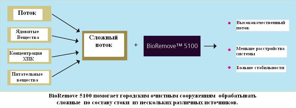 BioRemove 5100 ris3